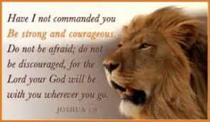 lion joushua
